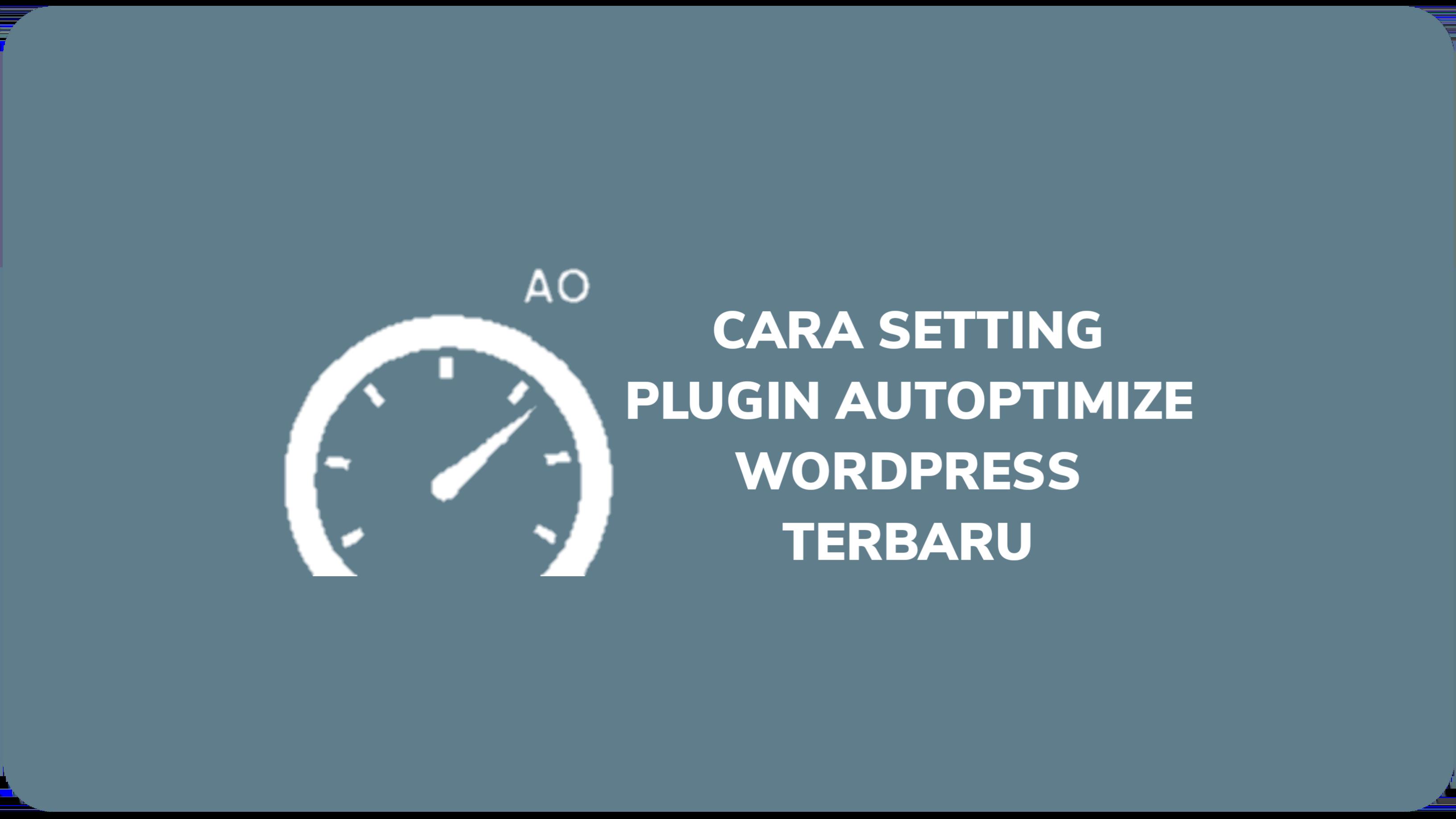 Cara Setting Plugin Autoptimize Wordpress Terbaru